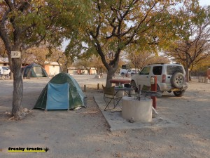 Our spot in Halali